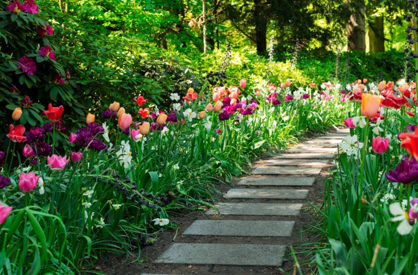 Z miłości do swojego ogrodu i całej planety