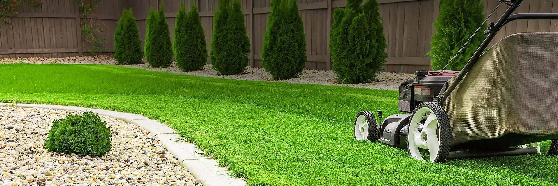 Zadbaj o swój zielony ogród