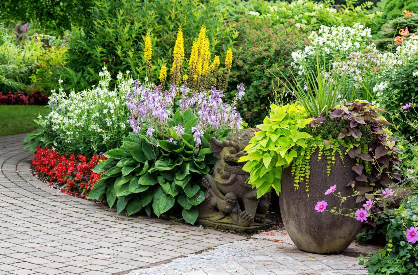 Własny raj – przydomowy ogród krok po kroku