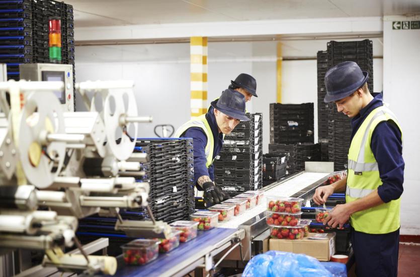 Czym powinna cechować się armatura dla przemysłu spożywczego?
