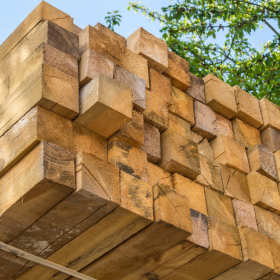 Tartak – biznes pachnący drewnem