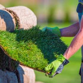 Wysokiej klasy trawa z rolki – jakie ma zastosowanie?