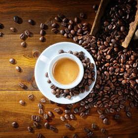 Najszlachetniejszy gatunek kawy – kawa arabica