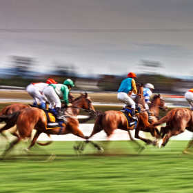 Czym dokładnie zajmuje się agencja jeździecka?
