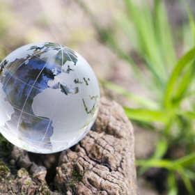 Profesjonalna ocena wpływu inwestycji i obiektów na środowisko