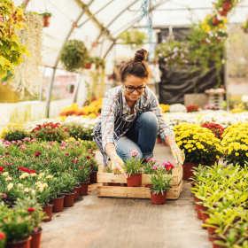 Czym zajmują się najlepsze firmy ogrodnicze?