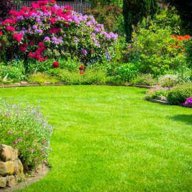Projektowanie i wykonawstwo systemu nawadniającego w ogrodzie