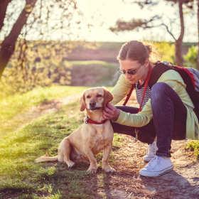 Dlaczego odpchlenie i odrobaczanie zwierząt jest tak istotne?