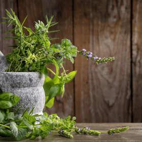 O ziołach i ich walorach zdrowotnych