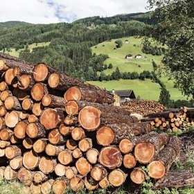 Jakie wyroby drewniane oferują tartaki usługowe?