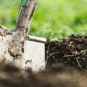 Podłoże dla roślin – jak wybrać dobrą ziemię ogrodową?