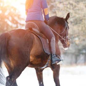 Podstawowe wyposażenie jeźdźca – co powinniśmy kupić dla dziecka, które rozpoczyna swoją przygodę z jazdą konno?