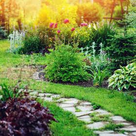 Jakie błędy są najczęściej popełniane przy zakładaniu ogrodów?