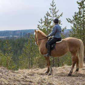 Podstawowe wyposażenie dla amatorów jazdy konnej