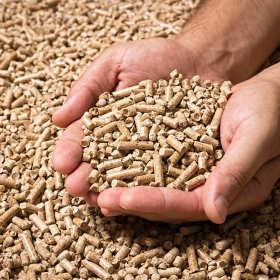 Dlaczego warto palić pelletem?