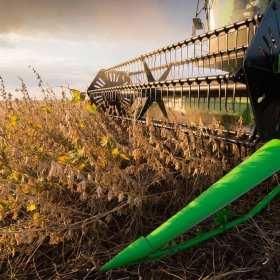 Dlaczego warto wzbogacić dietę zwierząt hodowlanych o pełnotłuste nasiona soi