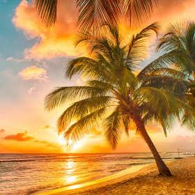 Marzysz o egzotycznych wakacjach? Sprawdź ofert biur podroży