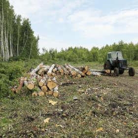 Charakterystyka ciągników do pracy na terenach leśnych