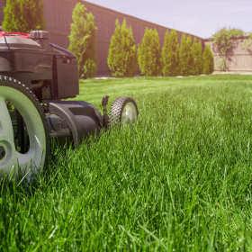 Właściwa pielęgnacja i wybór dobrej kosiarki to sekret pięknego trawnika!