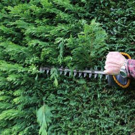 Profesjonalne narzędzia ogrodowe – tnij jak profesjonalista