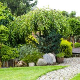 Ogród jak marzenie. Jak stworzyć piękny zielony zakątek?
