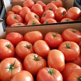 Hurtownia mobilna sposobem na dostarczenie świeżych warzyw