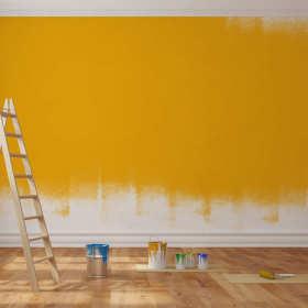 Wybór farby do mieszkania
