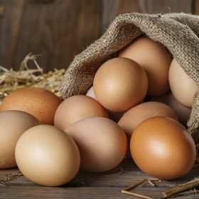 Jak wybierać świeże jaja dobrej jakości?