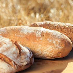 Dobry chleb to podstawa. Podpowiadamy, gdzie go szukać