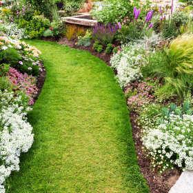 Podstawowe zasady projektowania ogrodu. Piękna i harmonijna przestrzeń wokół domu