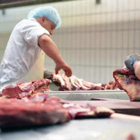 Wpływ uboju na jakość mięsa spożywczego