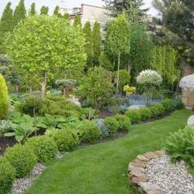Projektujemy ogród – jak zaplanować przestrzeń? Skąd brać rośliny? Poradnik