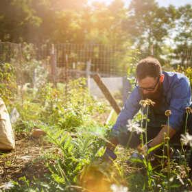 Podłoża ogrodnicze z mikroorganizmami