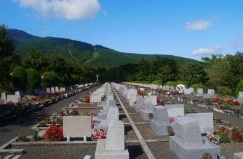 Kremacja. Jak zorganizować pochówek?