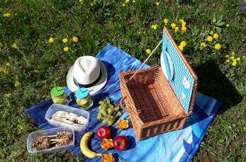 Co zabrać na piknik? Kosz piknikowy DIY i pyszne przekąski