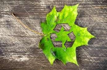 Skupy surowców wtórnych – jakimi odpadami się zajmują?
