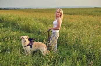 Jak najłatwiej i najtaniej sprzątać po psach?