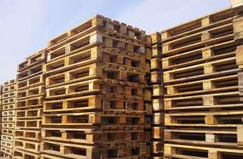Skup i sprzedaż palet drewnianych w rękach specjalistów z firmy Edjan Jan Przetacki.