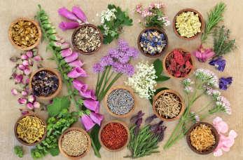 Naturalne produkty ważnym elementem dbania o zdrowie