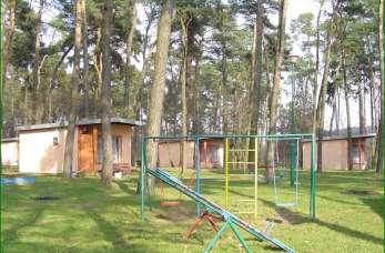 Gdzie zorganizować niepowtarzalną zieloną szkołę dla dzieci?