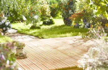 Każdy może mieć zachwycający ogród