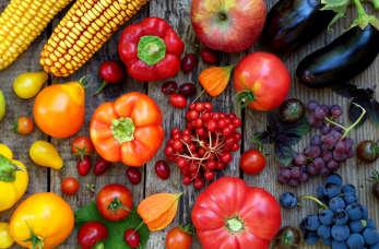Dieta w endometriozie – co jeść, czego unikać?