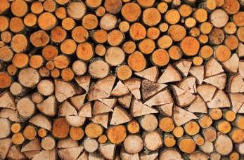 Drewno opałowe i kominkowe – kupuj mądrze!