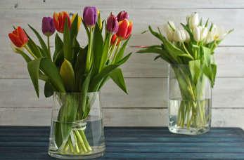 Co zrobić, aby bukiety ciętych kwiatów nie zwiędły zbyt szybko w wazonie?