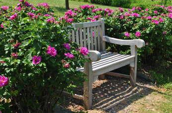 Jak znaleźć idealną ławkę ogrodową?