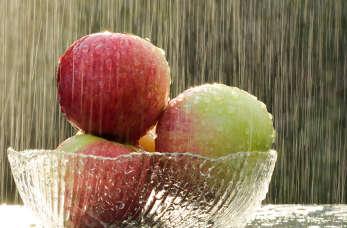 Jak wygląda dieta jabłkowa?
