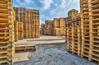 W jaki sposób powstają palety drewniane?
