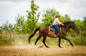 Konie – odwieczna pasja człowieka