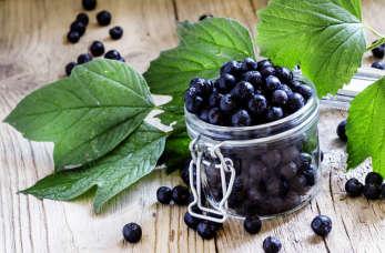 6 powodów, dlaczego warto jeść aronię