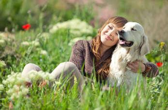 Lepiej nam ze zwierzętami? Jak zmienia się rola zwierząt w społeczeństwie